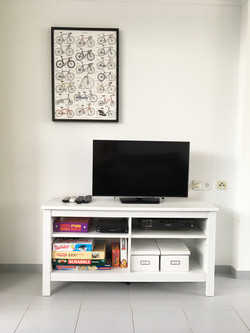 Television and Games