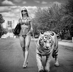 Glamour Tiger ONLINE.jpg
