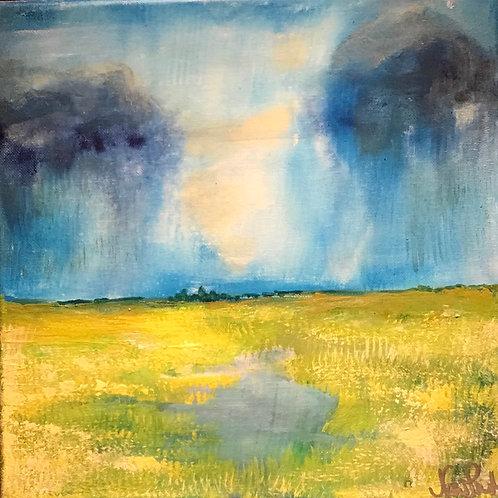 Summer Rain -  Series