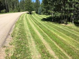 Calgary Lawn Care