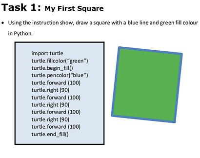 turtleTask