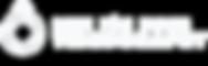 DFE-Videography-Logo-[RE-WHITE].png