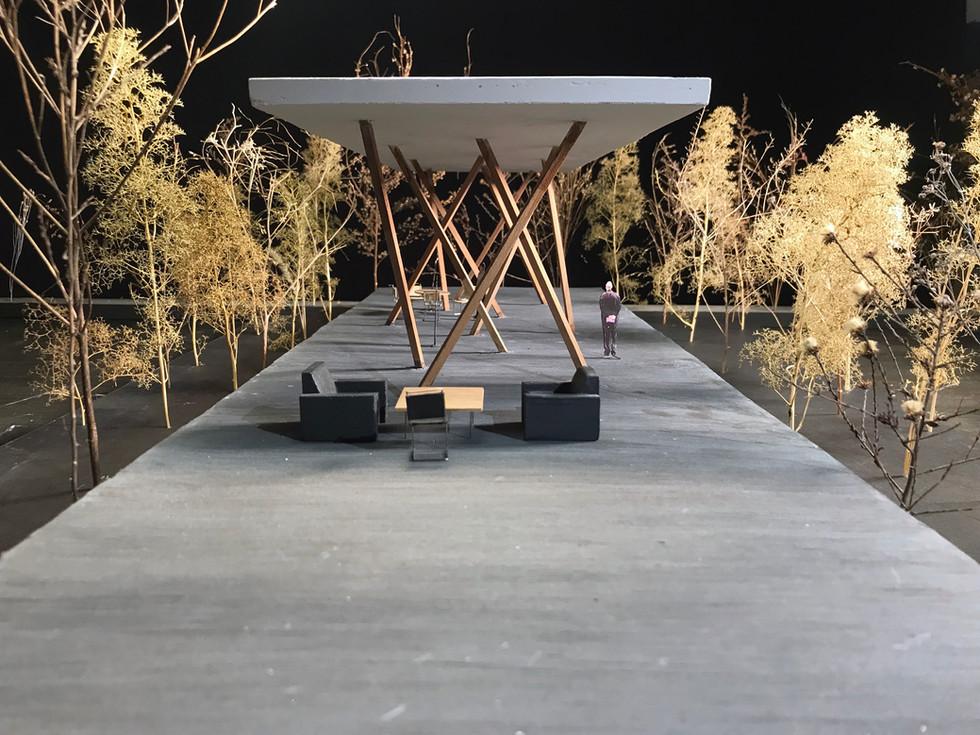 Wood Pavillion Project
