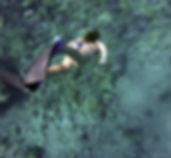 snorkeling-984422_1920.jpg