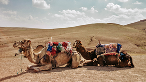 TIPS AND ADVICE FOR FIRST-TIME TRAVELLERS TO MOROCCO