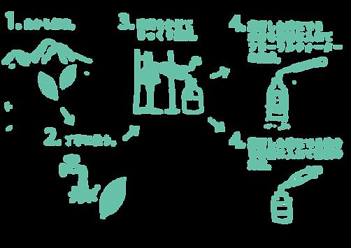 クロモジ水作り方新.png