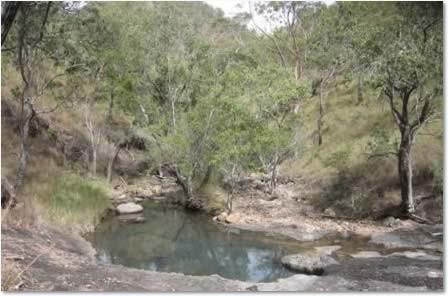 Pool at Mowbray Camp, Upper Dry River