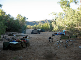 Early Morning in Camp