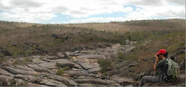 Wild River Cataracts- Wild River Explorer