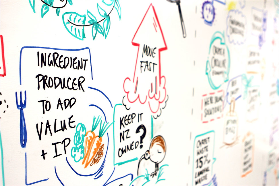 Graphic recording live scribing Christchurch New Zealand