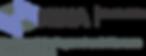 NINA redraw logo-01.png