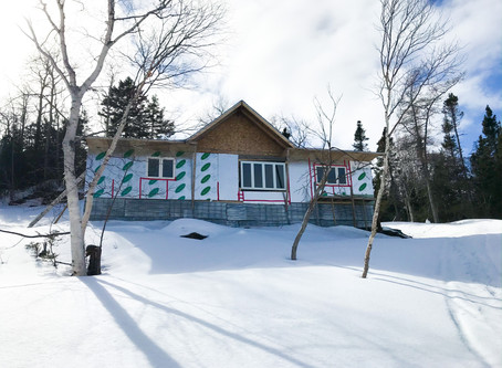 Cabin Tour- April 2020