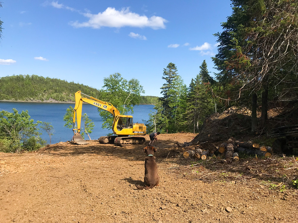 An excavator finishing land development for our diy offgrid cabin on the ocean