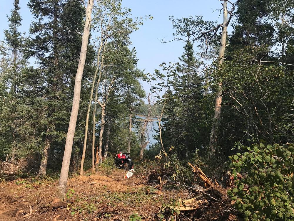 DIY land development for cabin build
