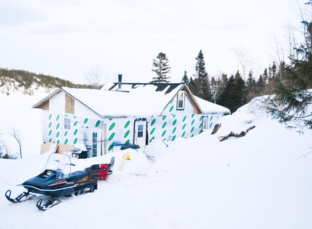 Cabin Update- March 1 2020