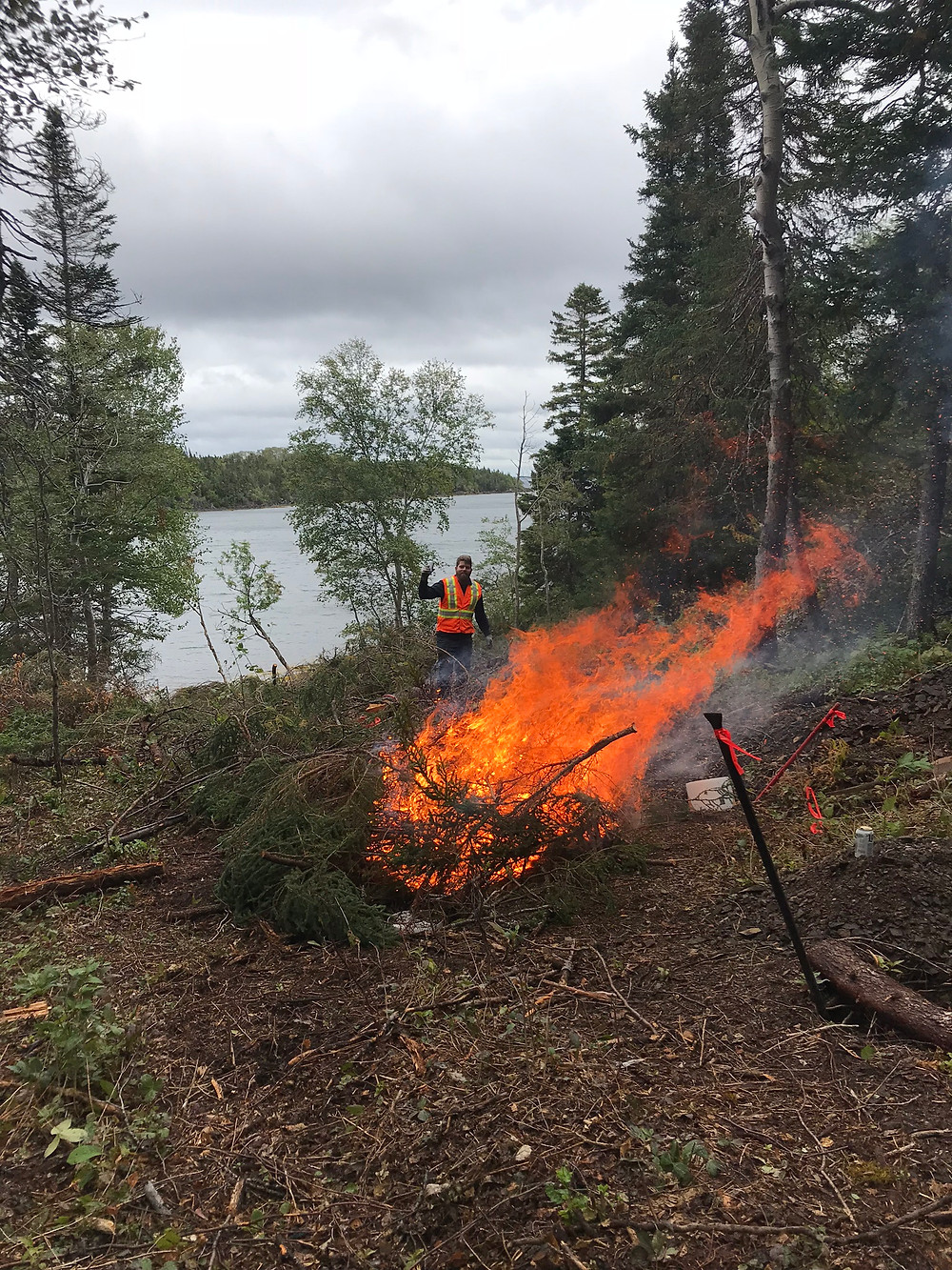 A larger brush fire for diy land development