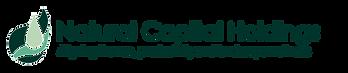 NCH Logo - V03.png