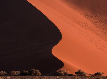 Il Surrealismo nella natura del Namib