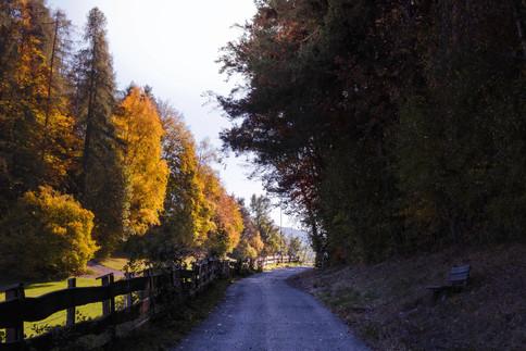 Dolomites 39