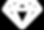logo_icona.png
