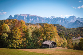 Francesca Parolin | Dolomiti