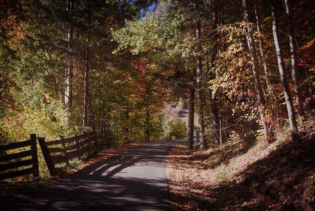 Dolomites 40
