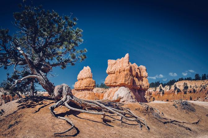 Bryce Canyon 02