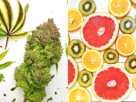 What's the difference - Cannabis Derived Terpenes vs Plant Derived Terpenes