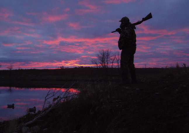 Hunter, purple sky 08.JPG