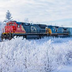 Train-00001.jpg