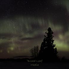 northern lights farmyard.jpg