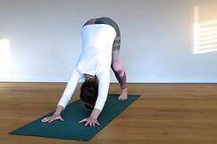 AOUM.yoga_DownDog_gr.jpg
