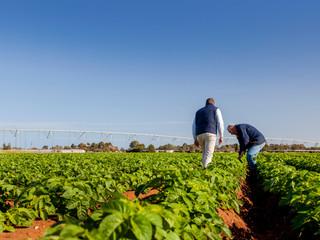 Partnership Key to Improving Soil Health