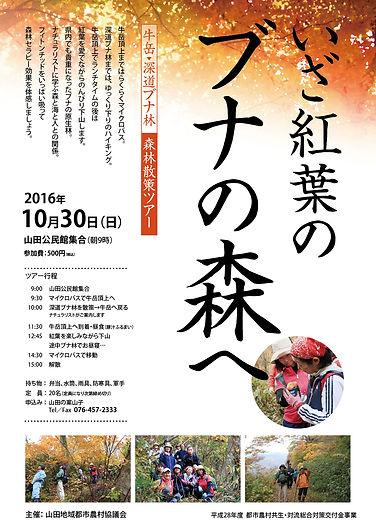 山田・深道ブナ林チラシ2016-01.jpg