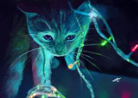 kitten in Christmaslights