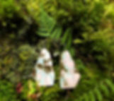 427-feuilles.jpeg