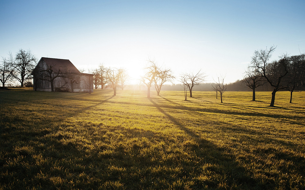 Sunset view of farmhouse