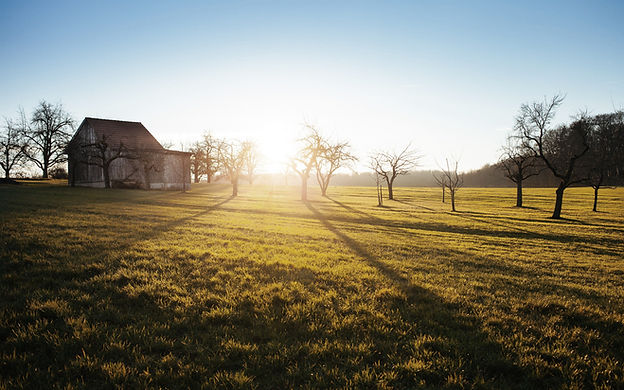 Bauernhof Feld