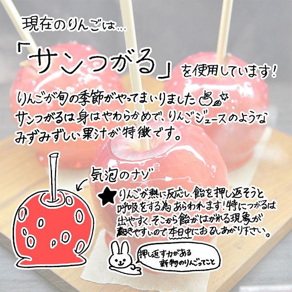 りんごの説明書(つがる).jpg