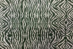 Grevy Stripe