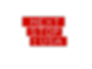 Logo NextstopUSA transparent medium size