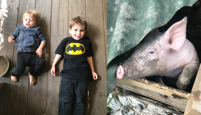 Two Kids and a Pig