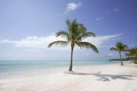Como surgiu esse paraíso conhecido como Punta Cana