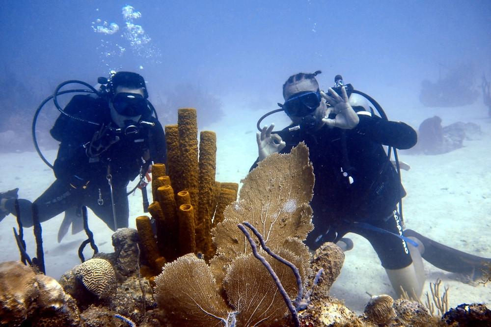 mergulho punta cana