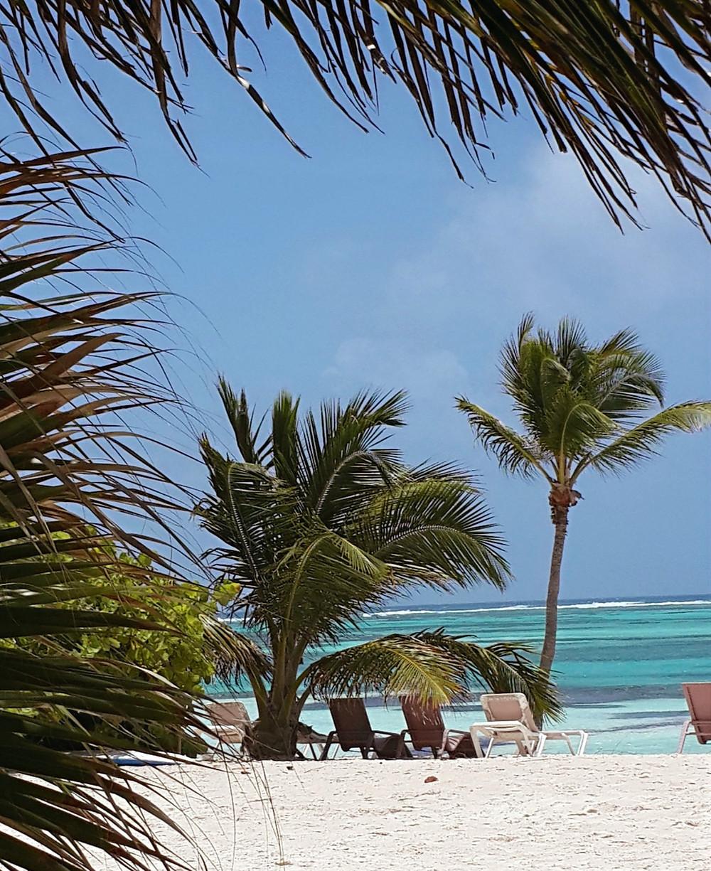 Playa Blanca Punta Cana