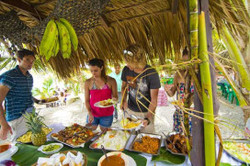 Plantação Punta Cana