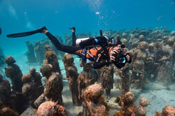 mergulho musa riviera maya