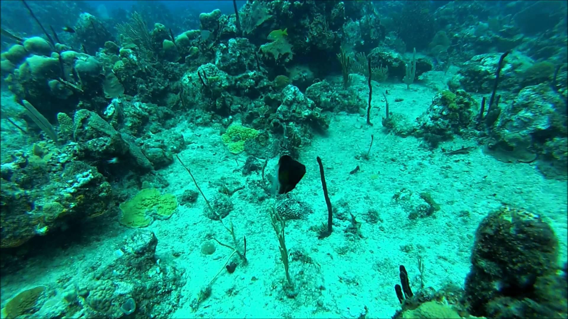 Tour Punta Cana