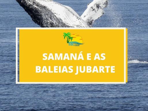 Já ouviu falar de Samaná, a jóia da República Dominicana?