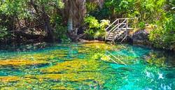 reserva natural punta cana